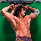 2010 Topps WWE Platinum Wrestling