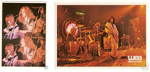 Vintage Rock & Roll Trading Cards: A Visual Guide 3