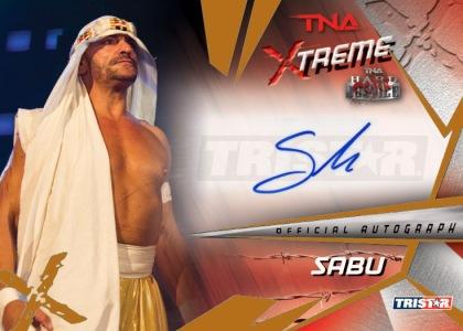 2010 TNA Xtreme Wrestling  12