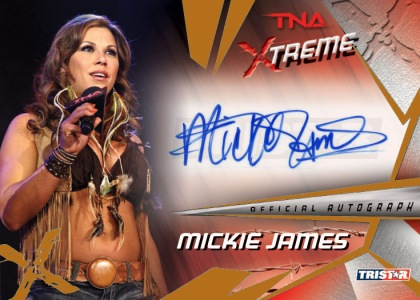 2010 TNA Xtreme Wrestling  13