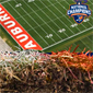 Auburn Selling Freeze-Dried Turf From 2011 BCS National Championship Game