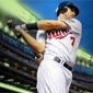Virtual Card Show: Joe Mauer Baseball Cards
