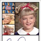 2011 Rittenhouse The Complete Brady Bunch Trading Cards