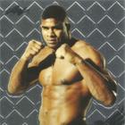 2011 Leaf Metal MMA Cards