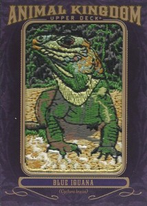 2012 Upper Deck Goodwin Champions Animal Kingdom Patch Cards AK-184 Blue Iguana