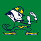 Notre Dame Football Cards: Collecting the Fighting Irish