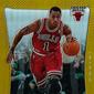 2012-13 Panini Prizm Basketball Hot List