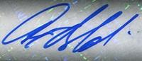 Anquan Boldin Cards and Autograph Memorabilia Guide 49