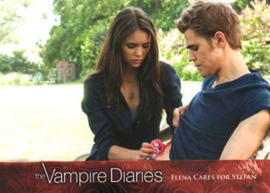 2013 Cryptozoic The Vampire Diaries Season 2 Trading Cards 19