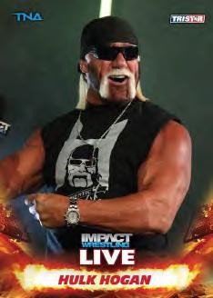 2013 Tristar TNA Impact Live Wrestling Cards 19