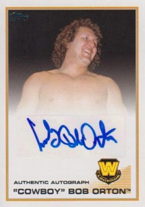 2013 Topps WWE Autographs Visual Guide 6