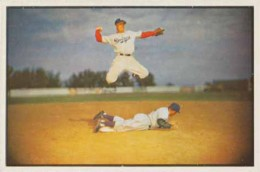 Top 10 1953 Baseball Card Singles 4