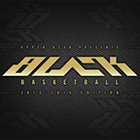 2013-14 Upper Deck Black Basketball Cards