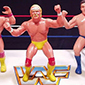 LJN WWF Wrestling Superstars Figures - The Best Wrestling Toys Ever?
