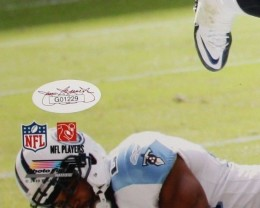 Arian Foster Cards and Autograph Memorabilia Guide 42
