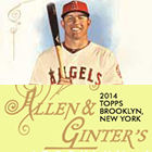 2014 Topps Allen & Ginter Baseball Cards