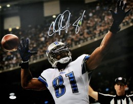 Calvin Johnson Football Cards: Rookie Cards Checklist and Buying Guide 53
