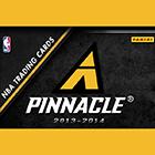 2013-14 Pinnacle Basketball Cards