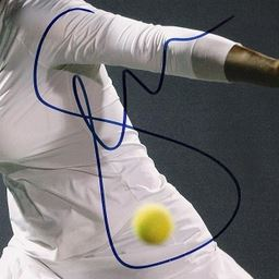Serena William Cut Signature