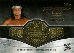 2014 Topps WWE Championship Belts Guide  19