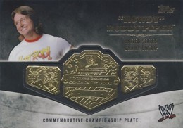 2014 Topps WWE Championship Belts Guide  20