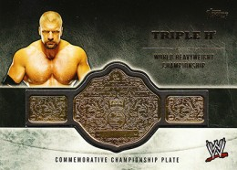 2014 Topps WWE Championship Belts Guide  10