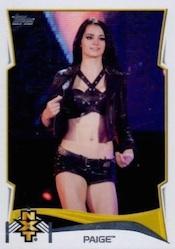 2014 Topps WWE Wrestling Cards 28