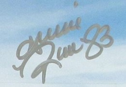 Andre Reed Signature Example