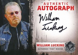 2014 Cryptozoic Sons of Anarchy Seasons 1-3 Autographs A7