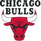 Chicago Bulls Collecting and Fan Guide