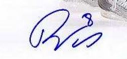 Drew Doughty Signature Example