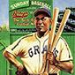 7 Awesome Negro League Baseball Card Sets