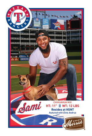 2014 Merrick Texas Rangers Dogs Safe at Home Baseball Cards 22