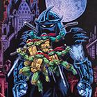 2014 IDW Limited Teenage Mutant Ninja Turtles 30th Anniversary Sketch Cards