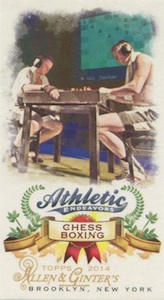 Unannounced 2014 Topps Allen & Ginter Baseball Mini Insert Guide 4