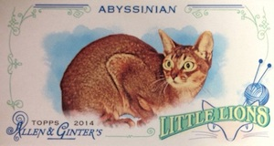 2014 Topps Allen & Ginter Baseball Cards 35