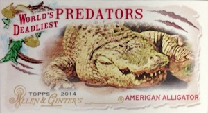 2014 Topps Allen & Ginter Baseball Cards 46