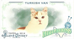 2014 Topps Allen & Ginter Getting a Binder with Exclusive Cards 6