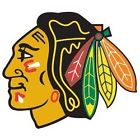 Chicago Blackhawks Collecting and Fan Guide