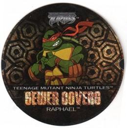 A Brief History of Teenage Mutant Ninja Turtles Trading Cards 12