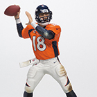 2014 McFarlane NFL 34 Sports Picks Figures