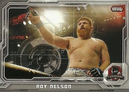 2014 Topps UFC Champions Nickname Variations Guide 45