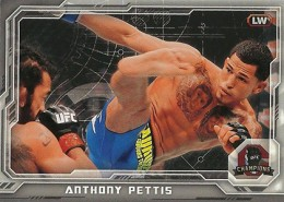 2014 Topps UFC Champions Nickname Variations Guide 3