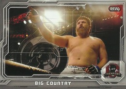 2014 Topps UFC Champions Nickname Variations Guide 46
