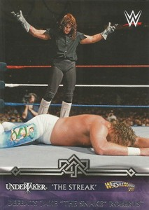 2014 Topps WWE Road to WrestleMania Trading Cards 27