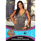 2011 FCW Summer Slamarama Wrestling Cards