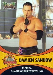 2011 FCW Summer Slamarama Wrestling Cards 3