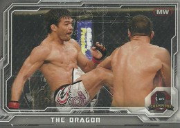 2014 Topps UFC Champions Nickname Variations Guide 6