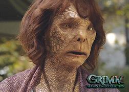 2015 Breygent Grimm Season 2 Trading Cards 24