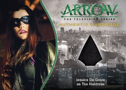 2015 Cryptozoic Arrow Season 1 Trading Cards 29